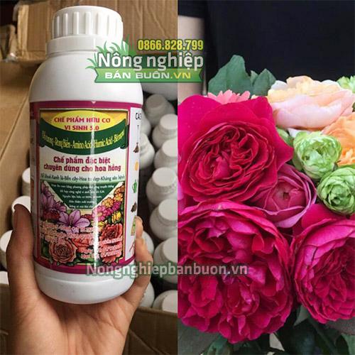 Chế phẩm đỗ tương ngâm cho hoa hồng - T100