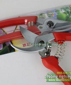 Kéo cắt cành Buddy 021 nhập khẩu Đài Loan - K7
