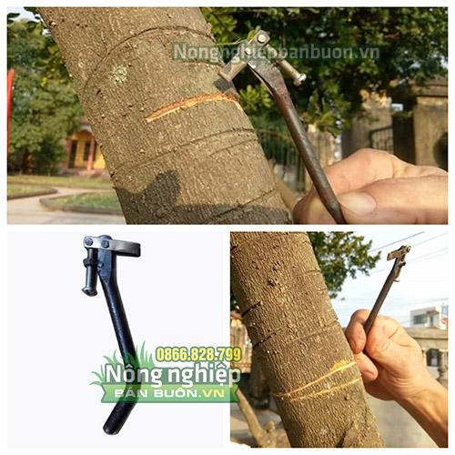Dụng cụ khoanh vỏ cây có ốc điều chỉnh - loại to - D3A