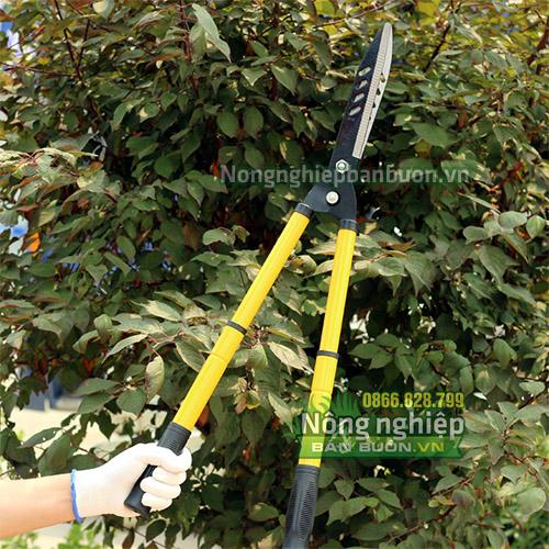 Kéo cắt tỉa hàng rào cao cấp - K13
