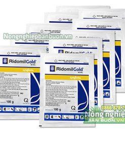 Thuốc Ridomil Gold trị thán thư sương mai - T29