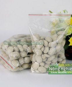 Phân hạt bàng, phân tan chậm cho cây ăn quả - T125