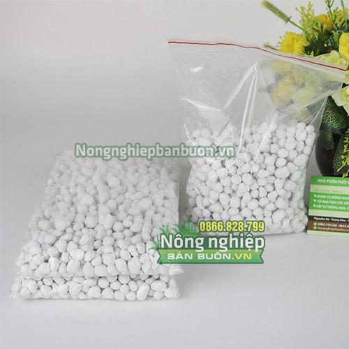 Phân hạt trắng Đài Loan - T126