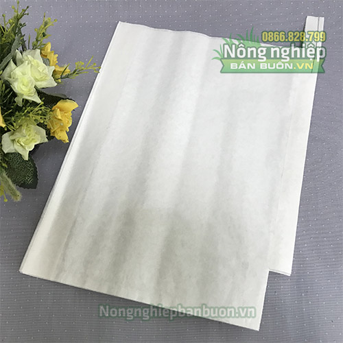 Túi bao bưởi chất liệu giấy sáp trắng 30x35 - TG3035T