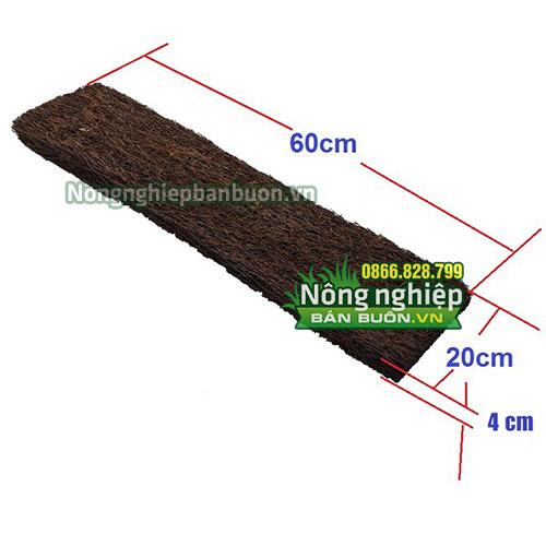 Vật tư trồng lan giá sỉ bảng dớn chữ nhật 60x20x4cm - GT20