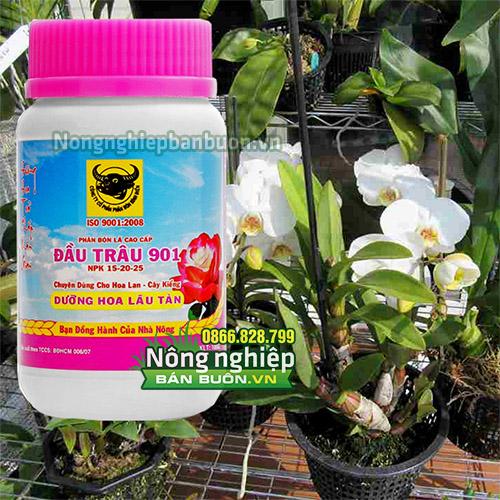 Phân bón Đầu Trâu MK 901 dưỡng hoa lâu tàn - T99