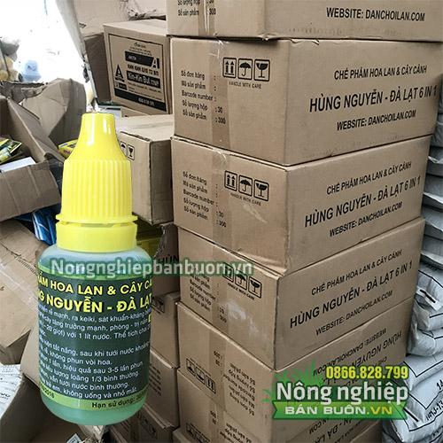 Chế phẩm Hùng Nguyễn kích kie, kích rễ cực mạnh - T21