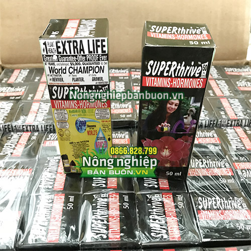 Thuốc tăng trưởng Superthrive 50ml nhập khẩu Mỹ - T81