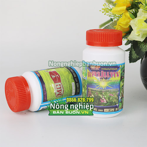 Thuốc trị bệnh thối nhũn Captan Thái Lan - T124