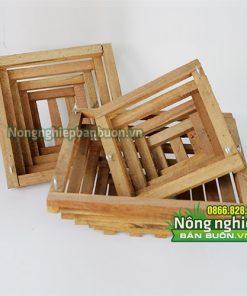 Chậu gỗ trồng lan hình vuông CG5