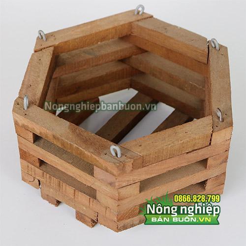Chậu gỗ trồng lan hình lục giác CG06