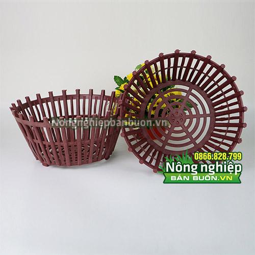 Chậu nhựa trồng lan kiếm phi 25cm có nan phụ - CN7