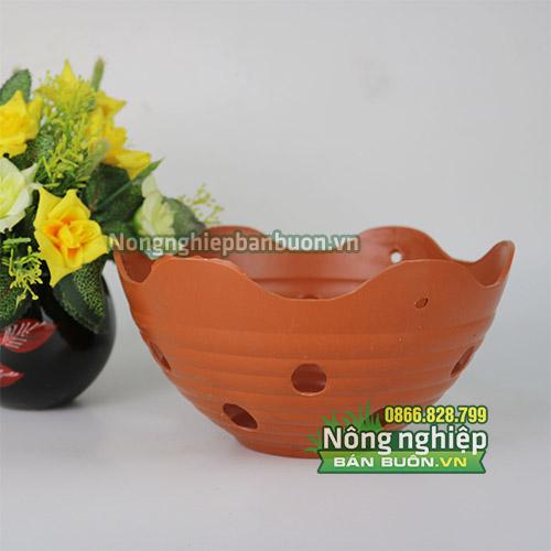 Chậu nhựa trồng hoa miệng sóng phi 20 CN25