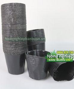 Chậu nhựa đen giá rẻ 13x12- CH4