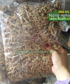 Rêu Chi Lê trồng lan GT24