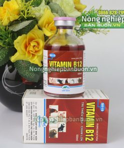 Dung dịch Vitamin B12 giải độc cho cây - T163