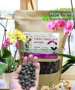 Phân trùn quế hạt mận Vernuts bón lan - T159