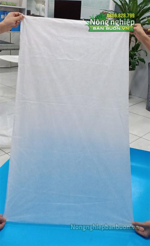 Túi bao buồng chuối sử dụng dây rút kích thước 60x100